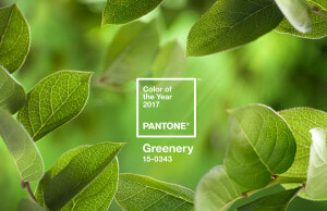 Pantone - Colour of the year 2017 - Greenery 15-0343