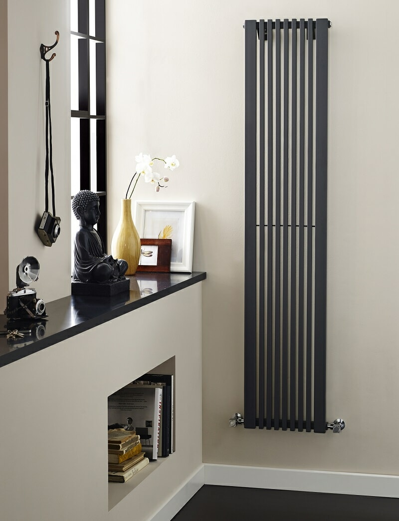 anthracite vertical radiator in hallway with travel memorabilia, vintage camera, and books