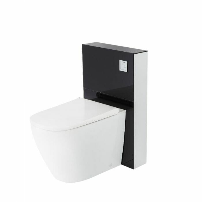 Japanese toilet cut out