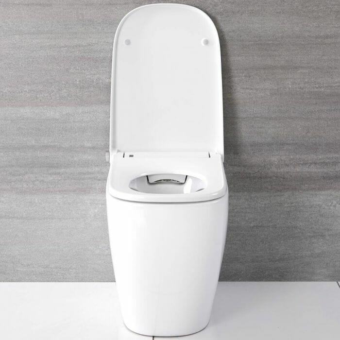 Back to wall japanese toilet