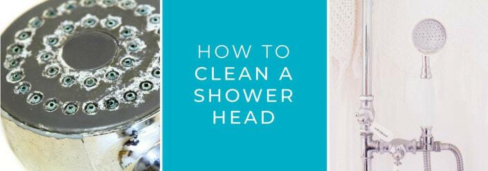 clean-shower-head-blog (1)