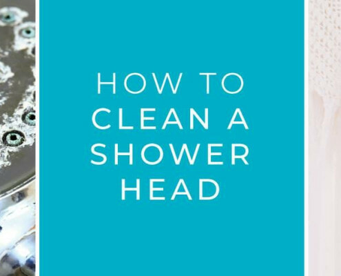 clean-shower-head-blog (1)