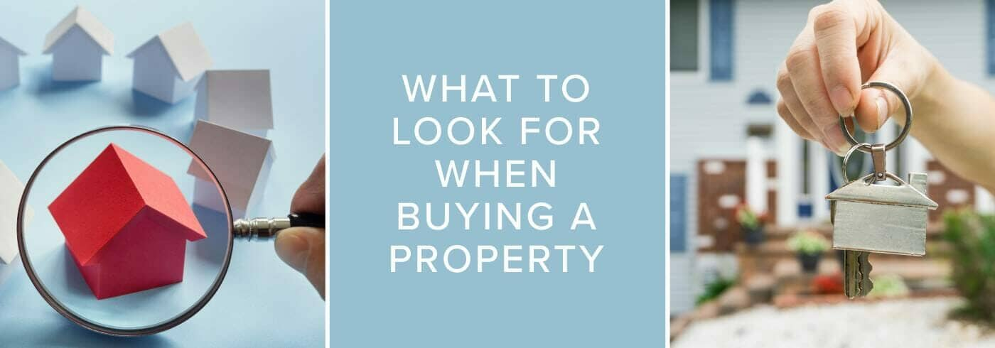 what to look for when buying a home featured image-blog