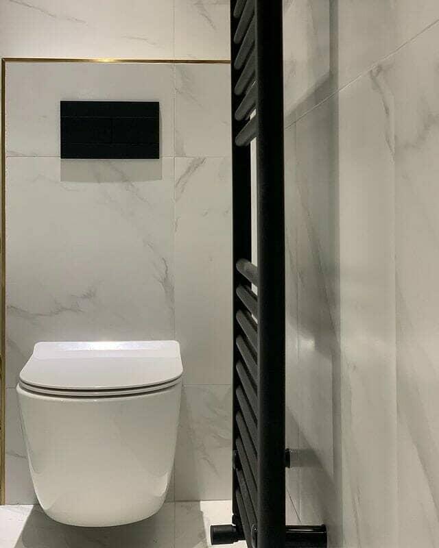 beautiful wall hung toilet