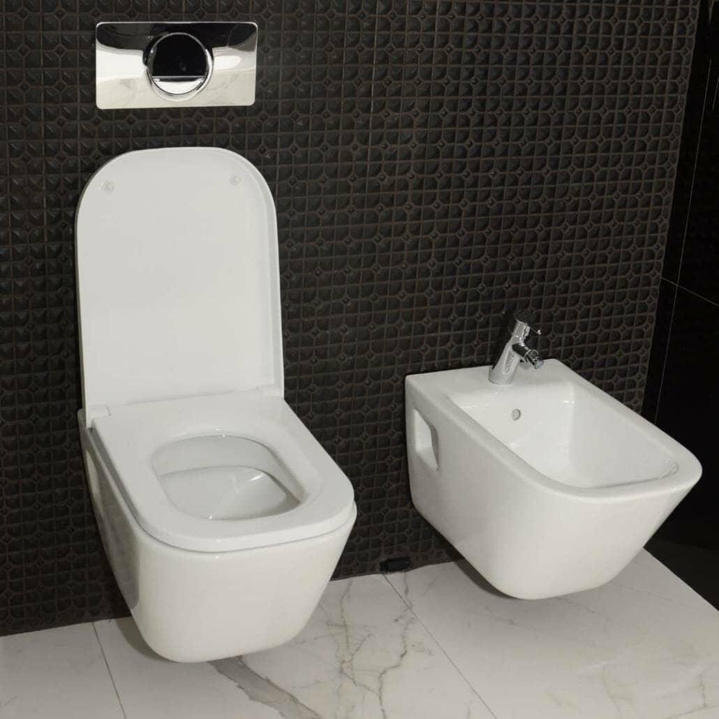 wall hung toilet and bidet