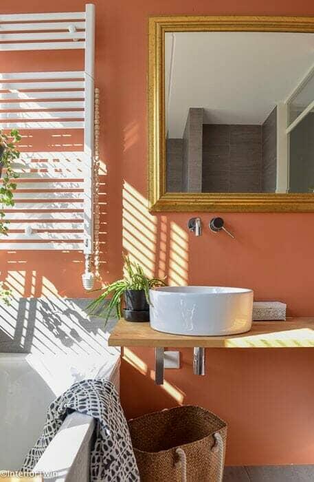 Terracotta painted bathroom walls